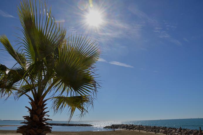 vastgoed kopen nieuwbouwproject aan de Middelllandse zee Camargue op wandelafstand van het strand en het centrum van Saintes-Maries-De-La-Mer
