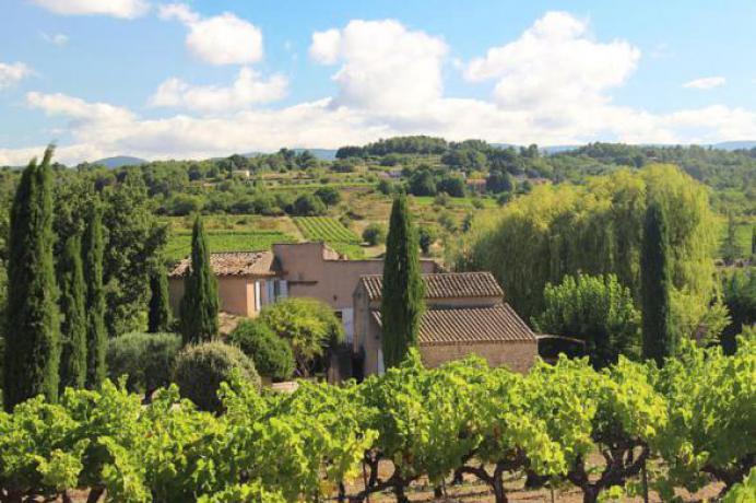 vakantiehuis huren in de Provence tussen de wijngaarden in de Luberon