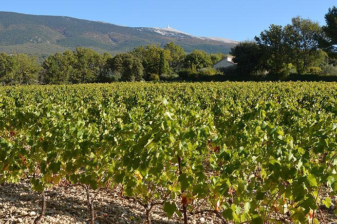vastgoed kopen in Zuid-Frankrijk via Belgisch makelaarskantoor in Crillon-le-Brave